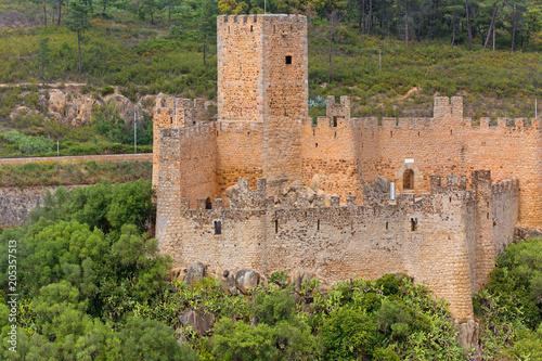 Fotografie, Obraz  Almourol Castle