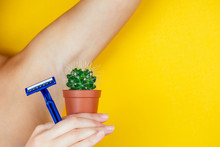 A Woman Holding A Green Cactus In A Brown Pot And A Razor Near The Armpits. The Concept Of Depilation, Hair Removal And Removal Unwanted Hair On The Body
