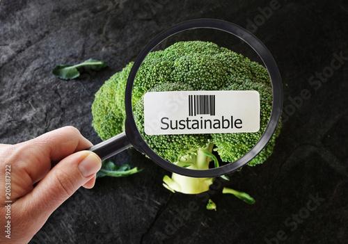Obraz Sustainable food concept - fototapety do salonu