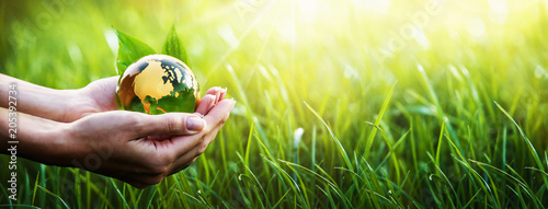 Foto op Canvas Natuur Green Planet in Your Hands. Environment Concept