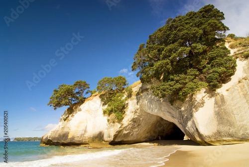 Cathedral Cove at Coromandel Peninsula, North Island, New Zealand.