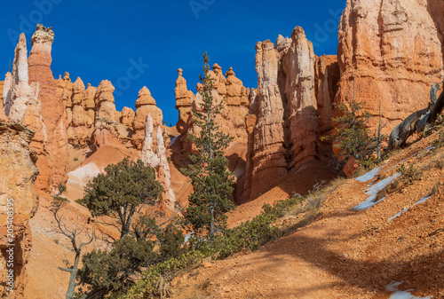 Poster Diepbruine Winter Landscape in Bryce Canyon Utah