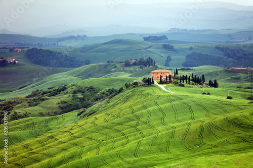 Foto op Canvas Pistache Summer landscape in Tuscany, Italy, Europe