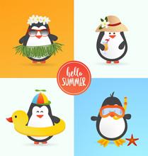 Cute Summer Penguin Characters...