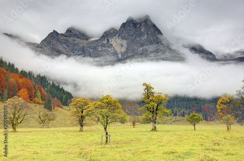 Photo Beautiful autumn scenery of grassy meadows & colorful maple trees by the rocky m