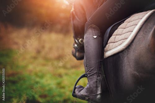 Woman in riding gear sitting on a horse in a field Fototapete
