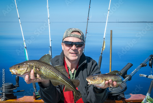 Angler with fresh caught cod fishes