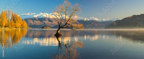 Photo  Lake Wanaka, Otago, South Island, New Zealand