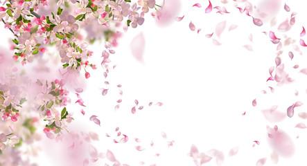 NaklejkaSpring Cherry Blossom
