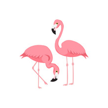 Flamingos. Watercolor Tropical Illustration With Flamingo Couple And Palm Tree Leaves Background. Hand Drawn Bright Art In Vector