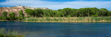 Lagoon, Marsh, Trees, And Cliff At Dead Horse Ranch State Park In Cottonwood, Arizona