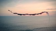Kite is soaring through the sky above ocean on sunset time Bali Indonesia Culture