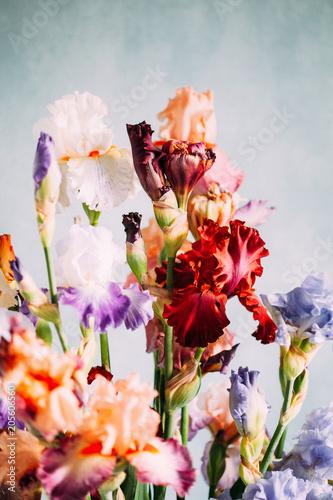 Foto op Canvas Iris iris flowers in the vase