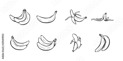 Leinwand Poster Set of banana hand drawn illustration vector sketch collection line art icon