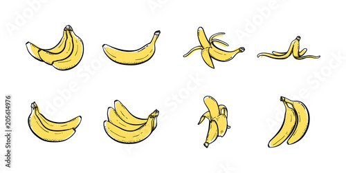 Valokuvatapetti Set of banana hand drawn icon illustration vector Sketch colored collections