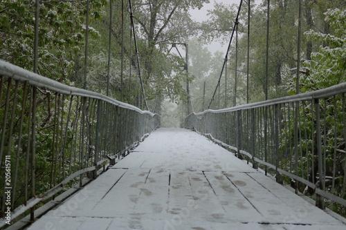 summer-snow