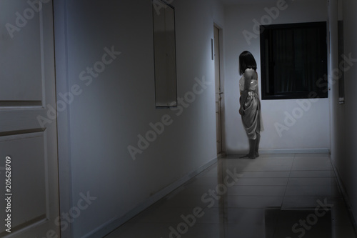 Obraz Horror woman wearing Thai traditional costume, standing in front of the door, Thai ghost concept - fototapety do salonu