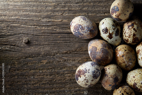 Fotografiet Spotted quail eggs arranged on the background of old wooden boards, with copy-space, selective focus