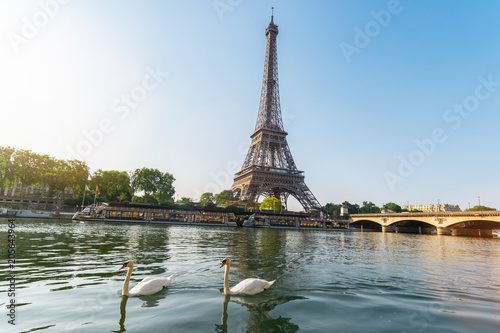 Wall Murals Central Europe Eiffel tower, Paris in France with swans at the seine river