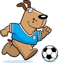 Cartoon Dog Soccer