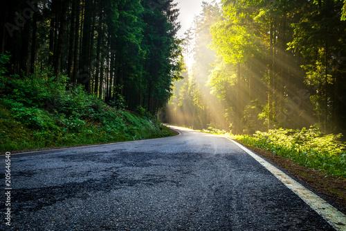 Foto auf Leinwand Eisenbahnschienen Sonnenstrahlen im morgentlichen Wald auf einer Straße welche durch den Bayerischen Wald führt