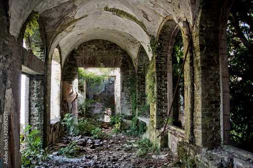 Ruined abandoned overgrown interior of abandoned mansion, Abkhazia, Georgia