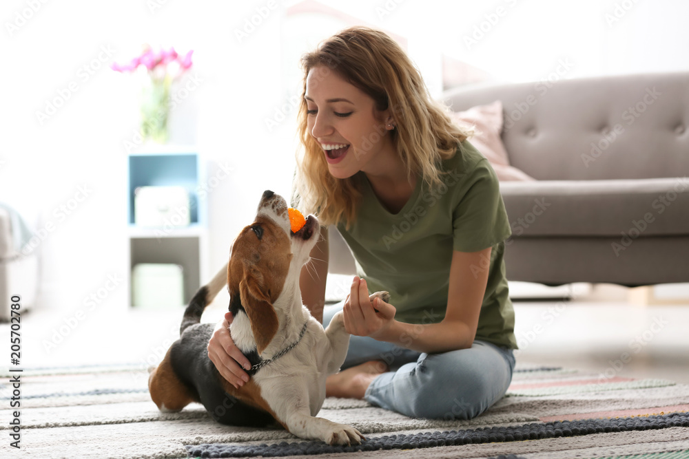 Fototapety, obrazy: Young woman playing with her dog at home
