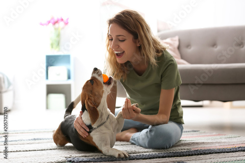 Young woman playing with her dog at home