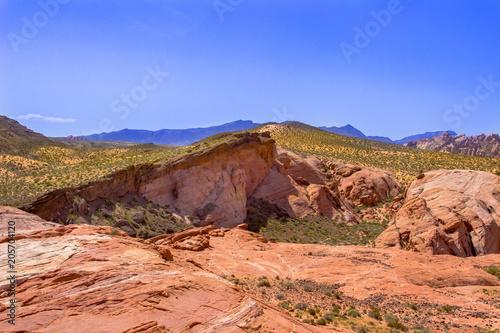 Tuinposter Zalm Desert Red Sandstone Hills