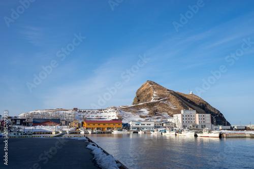 Tuinposter Poort 鴛泊港とペシ岬の風景