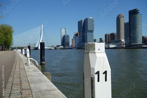 Fototapety, obrazy: Rotterdam