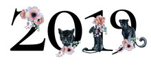 Year 2019 Floral Romantic  Number Design With Peonies Flowers Bouquets And Black Panthers. Watercolor New Year Sign