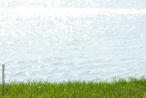 summer lakeside background, focus on turf grass and blur waves Fototapeta