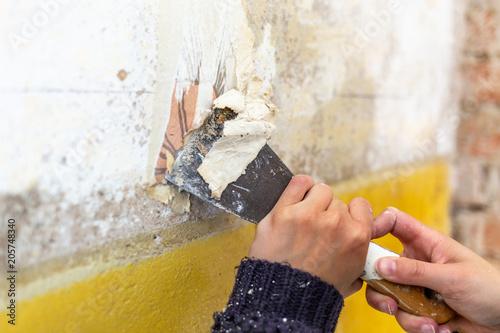 Fotografía  Junge Frau mit Spachtel in der Hand renoviert