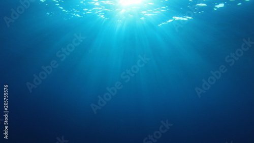 Papiers peints Recifs coralliens Underwater ocean background