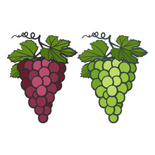 Colored Icons Of Bunches Of Grapes With Leaves