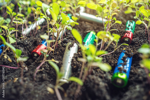 Used Alkaline Batteries Lie In The Soil Where Plants Grow Concept Of Environmental Pollution With