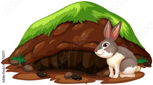 Papiers peints Jeunes enfants A Cute Rabbit Getting Out of Hole
