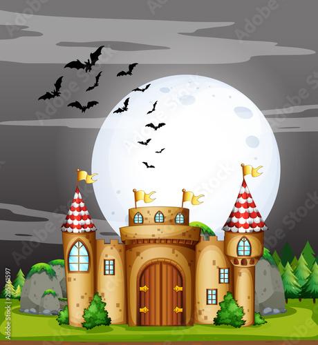 Papiers peints Jeunes enfants A Full Moon Night and Castle