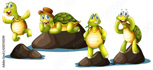 Papiers peints Jeunes enfants A Set of Happy Turtle