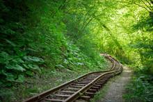 Old Narrow-gauge Railway In Th...