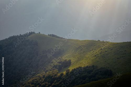Fotobehang Olijf Beautiful mountains and blue sky in the Carpathians. Ukraine.