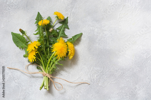 Bouquet of fresh yellow dandelion on light background. Copy space. Top view.