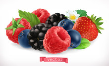 Forest Fruits And Berries. Ras...