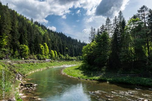 Plakat Widok z lotu ptaka halna rzeka w lecie.