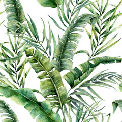 FototapetaWatercolor tropical seamless pattern with coconut and banana palm leaves. Hand painted greenery exotic branch on white background. Botanical illustration for design, print, fabric or background.