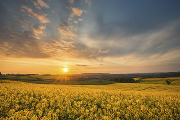 Dynamic Sunrise Over British Countryside Fields