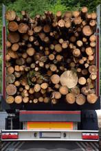 إزالة الغابات Disboscamento Wylesianie Entwaldung Deforestation Diboscamento Deforestación Déforestation Krčenje 森林砍伐 šume Desforestació Gozdov Deforestazione