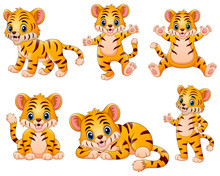 Happy Tiger Cartoon Set Collec...