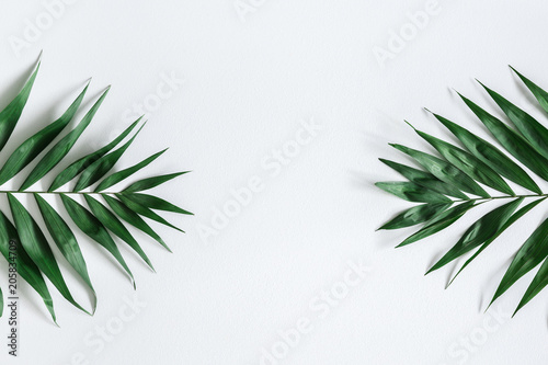 Tropical palm leaves on gray background. Summer concept. Flat lay, top view, copy space
